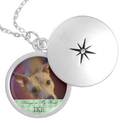 Customizable Pet Memorial Photo Keepsake Necklaces