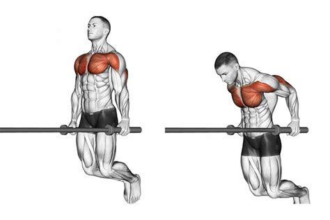 chest exercises  men man