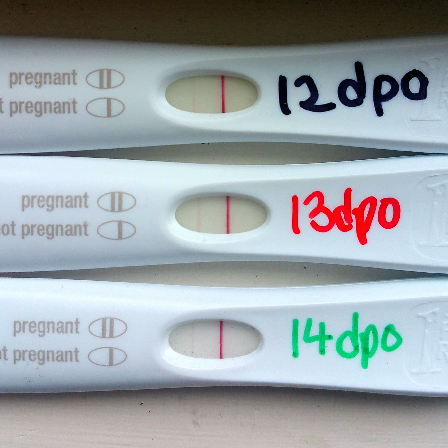 11 Dpo Negative Pregnancy Test Could I Still Be Pregnant ...