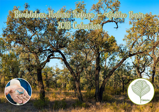 Bimblebox Nature Refuge's first Calendar!