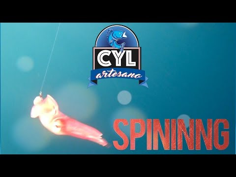 "CALAMAR VIVO VINILO CYL ""VERSION SPINNING"""