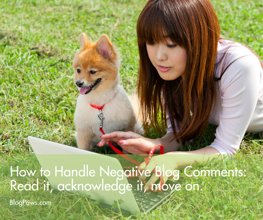 How to Handle Negative Blog Comments - BlogPaws