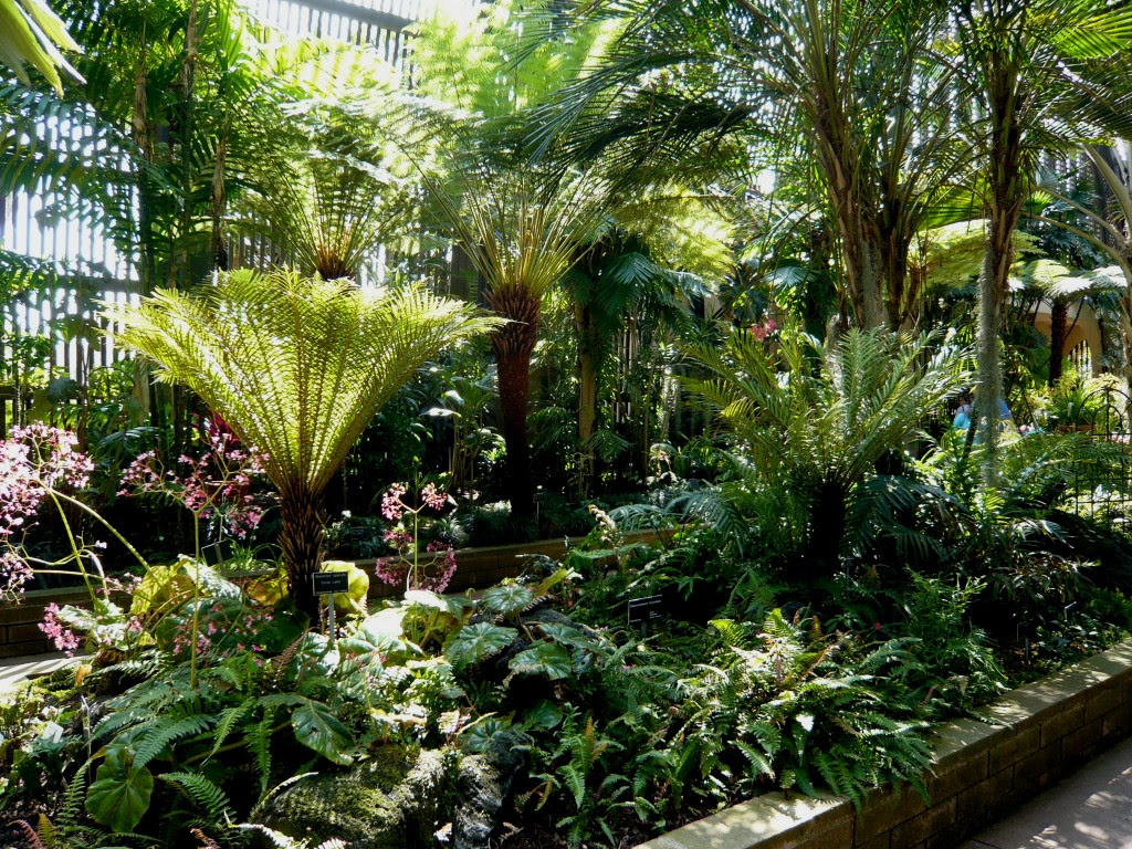 21+ Beautiful Tropical Landscaping Ideas Photos ... on Tropical Backyard Ideas  id=28157