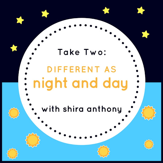 Shira Anthony's Take Two: Different as Night and Day – Post  | Dreamspinner Press Blog | Gay Romance