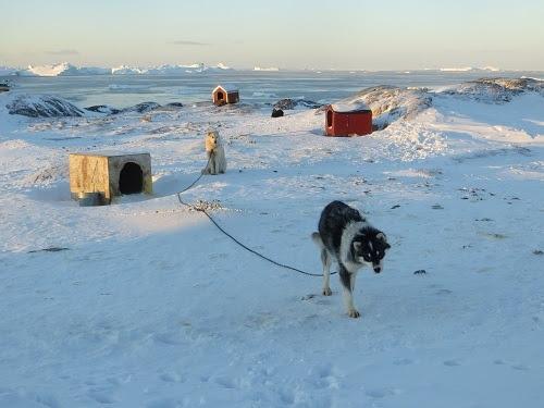 2015-03-12-1426168444-4216353-Greenland341.JPG