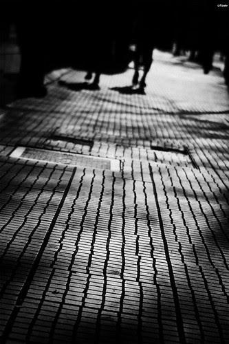 La calle, cuanto sabe. by Alejandro Bonilla