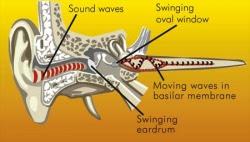 Ear Candling - Holistic Healing