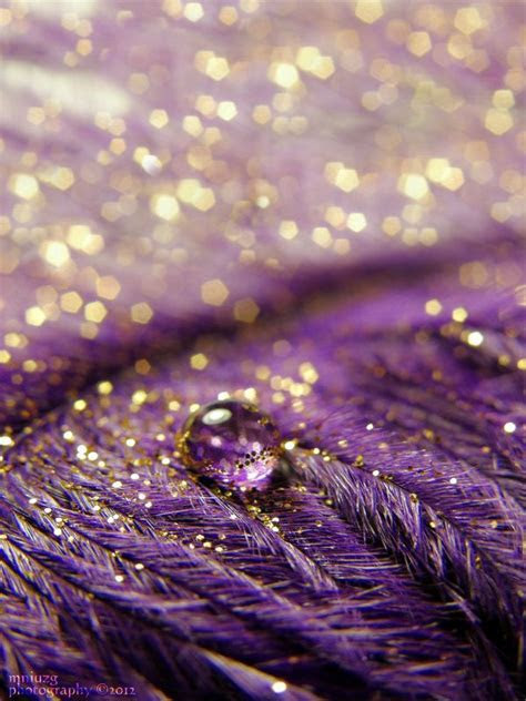 25  best ideas about Purple gold on Pinterest   Purple