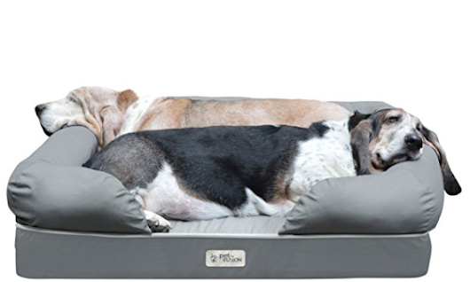 Win A FREE Premium Memory Foam Dog Bed! $120 Value! Spoil Your Dog!