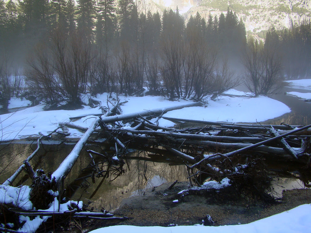 DSC03814 Yosemite Merced River in the mist