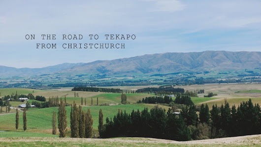 紐西蘭 | 基督城前往蒂卡波的路上,邂逅清新花園咖啡店 On the road to Tekapo from Christchurch, taking a rest at the garden coffee shop, New Zealand