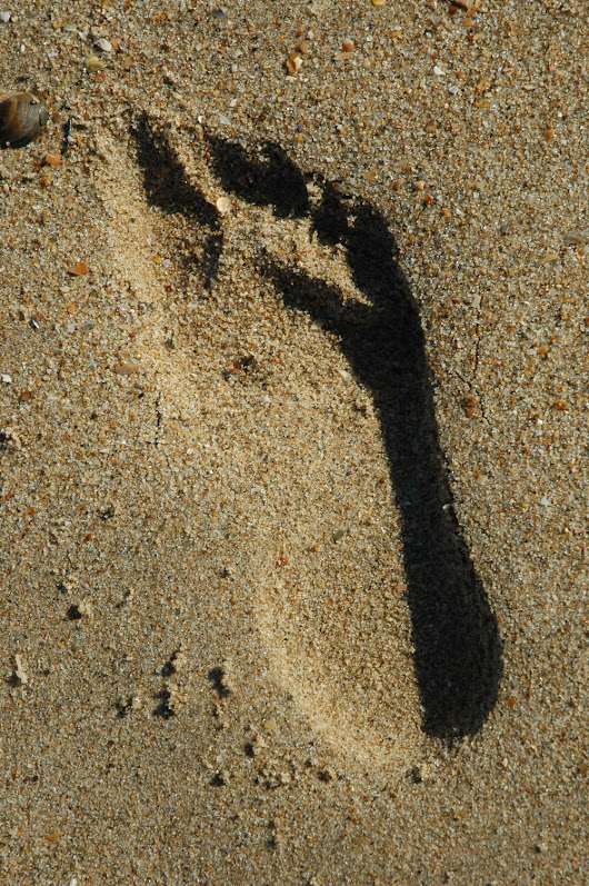 The Sole Footprint on a Crowded Sandy Beach