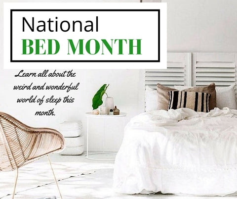 National Bed Month - March 2016 – Putnams