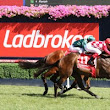 237 Fillies Included in 2017 Thousand Guineas Nominations