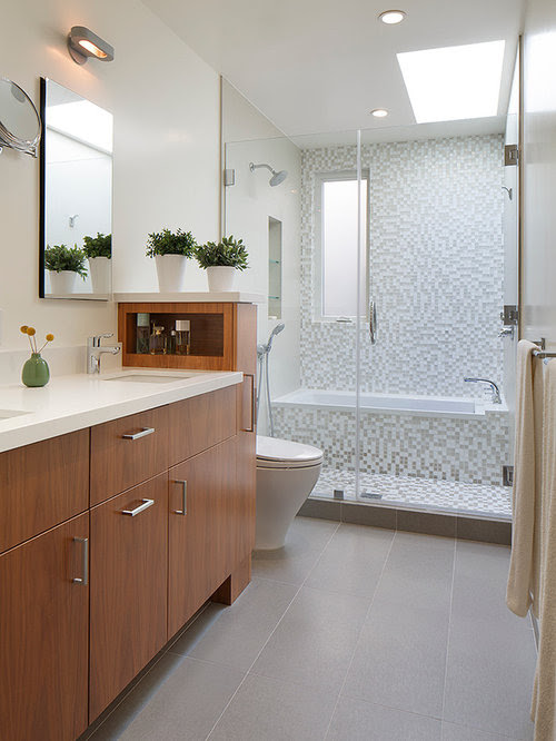 Bath Shower Combo Home Design Ideas, Pictures, Remodel and ...