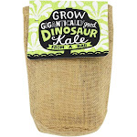 Noted - Grow Gigantically Good Dinosaur Kale