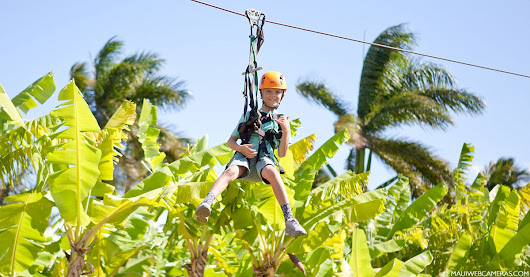 Maui Zipline Company: A Perfect Day with Kids!