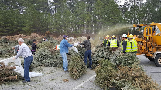 Gwinnett Clean and Beautiful begins accepting Christmas trees for Bring One For The Chipper