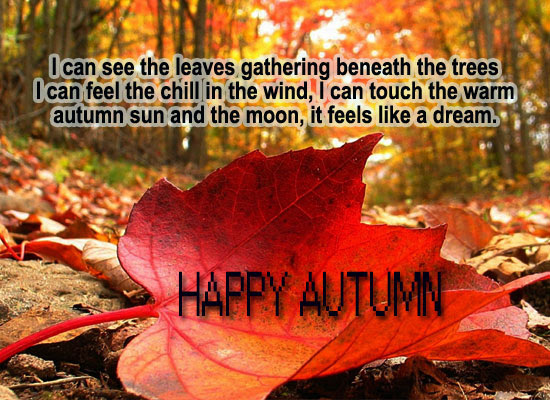 Bildergebnis für Happy Autumn