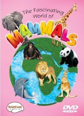 photo mammals_front_500__556451320384055300400_zps4f7f14fe.jpg