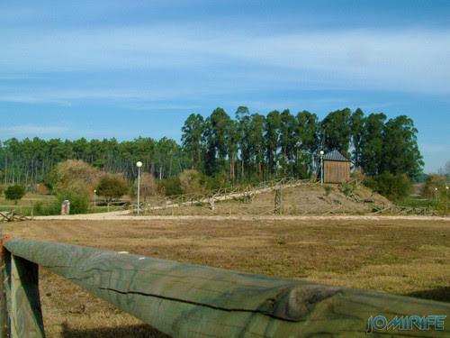 Moinho de vento do parque de Maiorca (1) [en] Windmill Park on Maiorca