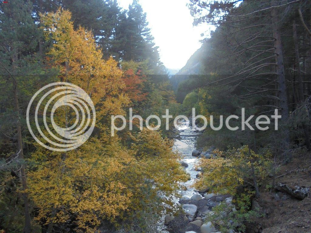 photo BACHIMALA - CULFREDAS 11-10-15 095_zpsmh2ai32r.jpg