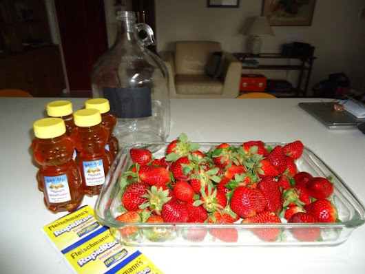 14 Mar 15 - Strawberry Mead