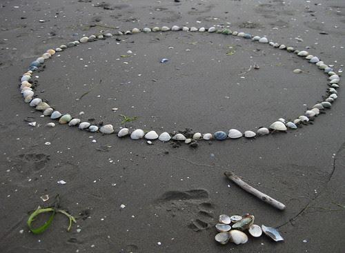 shell circle :: skjell i sirkel #1