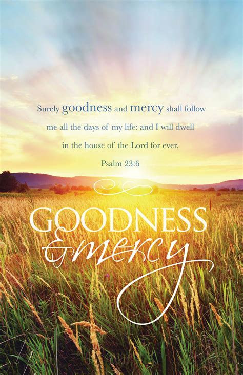 Goodness and Mercy   Parable Christian Stores
