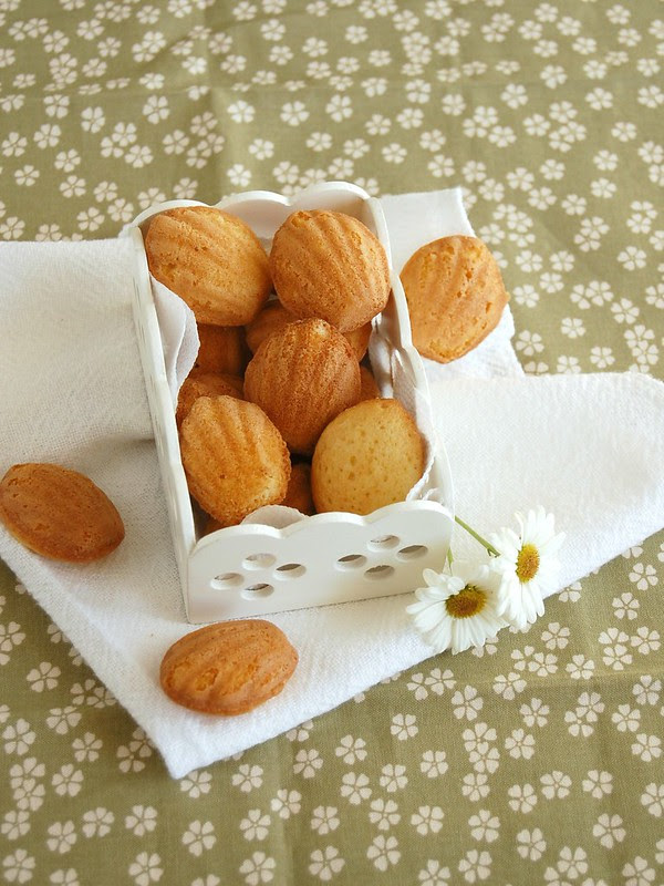 White chocolate and lemon madeleines / Madeleines de limão siciliano e chocolate branco