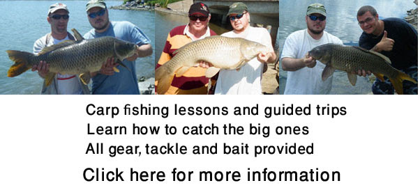 Canadian carp fishing guide, carp fishing lessons in Canada