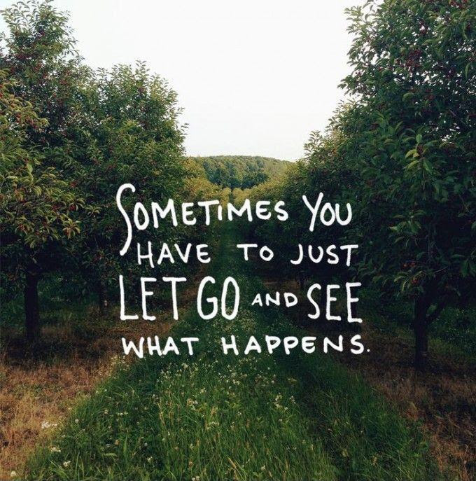 Sometimes You Have To Just Let It Go And See What Happens Picture