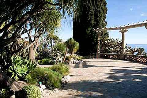 Exotic Gardens - a guide to creating an exotic garden