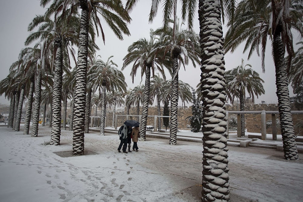 People walk near palm trees as snow falls outside Jerusalem's old city. (MENAHEM KAHANA/AFP/Getty Images)
