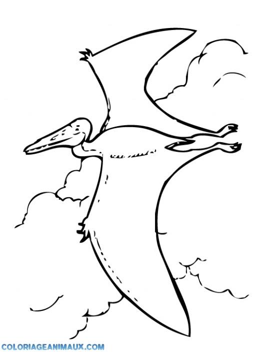 204 Dessins De Coloriage Dinosaure à Imprimer Sur Laguerchecom Page 7