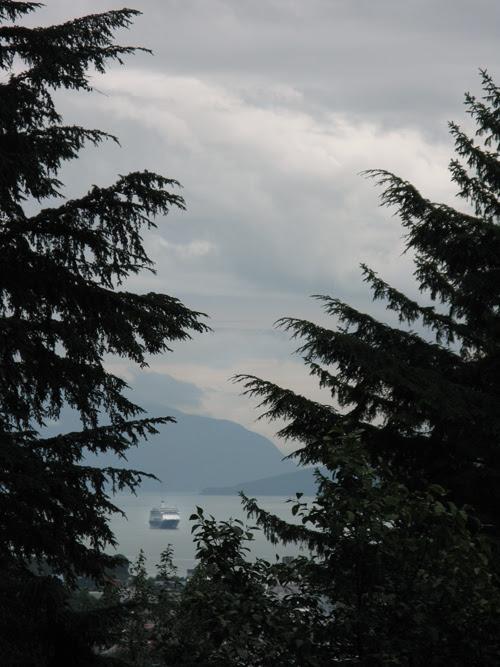 a cruise ship as seen through trees in Juneau, Alaska