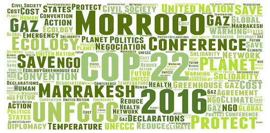 The rubber will hit the road for developing countries at COP22 in Marrakech