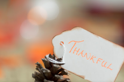 Eight Steps to Thankfulness, Part 2 (Thankfulness #6)