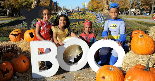 Festivals: Halloween happenings in the suburbs