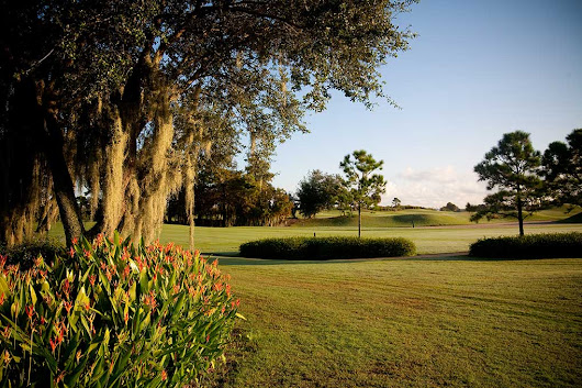 Featured Club: Polo Trace Golf Club -