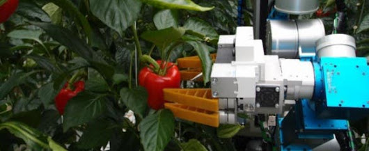 New robot picks peppers like a human