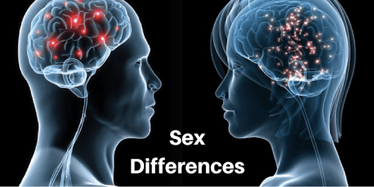 Sex Differences and ELT: Theory, Evidence and Practice - EFL Magazine
