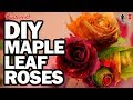 How To Make Maple Leaf Roses - Video