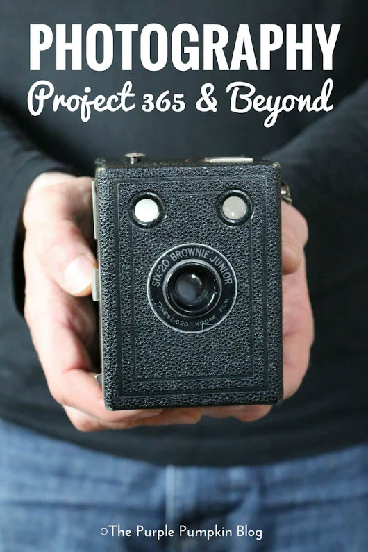 Photography: Project 365 & Beyond » The Purple Pumpkin Blog