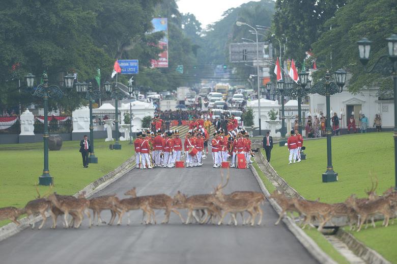 2017 03 01T102814Z 141914881 RC145FA4A8E0 RTRMADP 3 SAUDI ASIA INDONESIA
