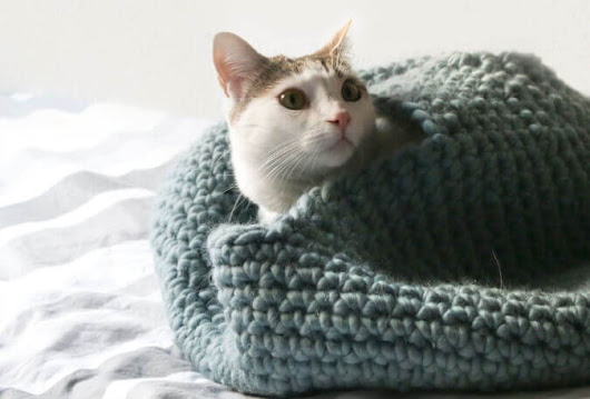 Crochet Cat House Pattern - Petals to Picots