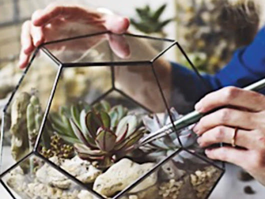 Large Geometric Glass Terrarium Container | Unique Christmas Gifts for Gardeners
