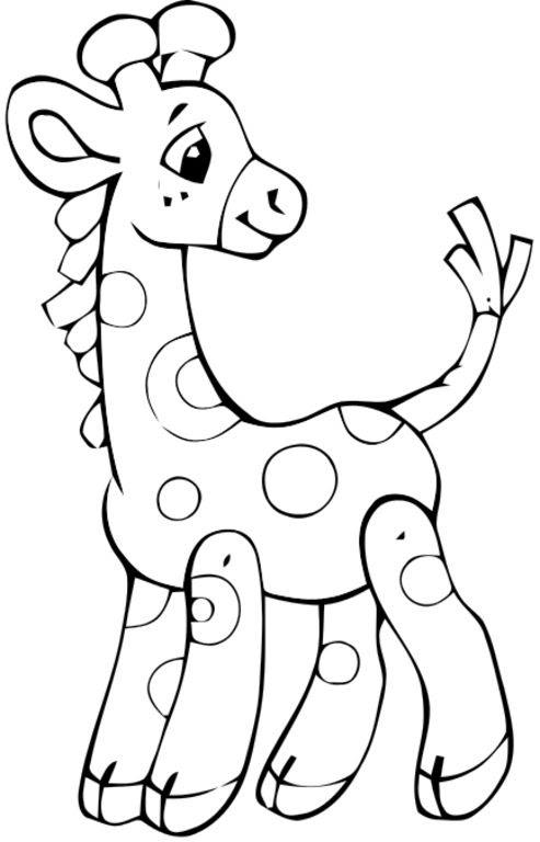 Dibujos Para Colorear Animales De La Selva Cuentos De Amatxu