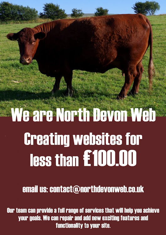 We can build you a website for £90 - Responsive Web Design