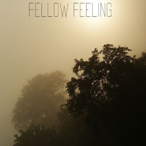 Fellow Feeling (Piano Cover) by Arch